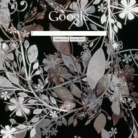 Goolge-Backgound-Image-Day__0006_google