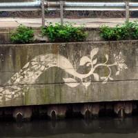 reverse-graffiti-10