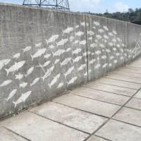reverse-graffiti-21